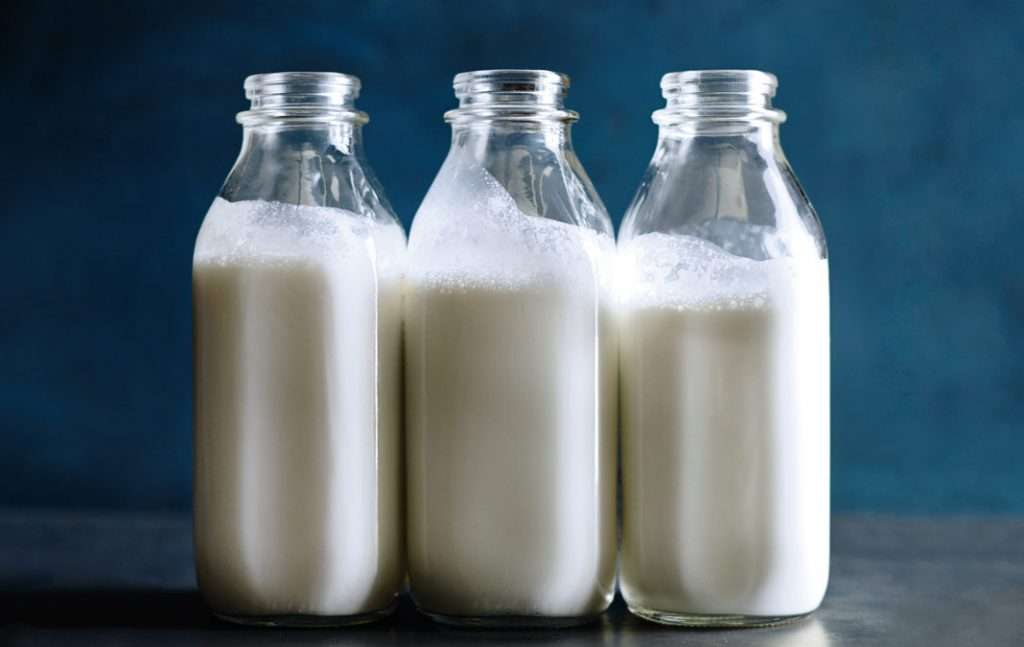 the development of the dairy product beliefs in the people With the development of microbiological and nutritional sciences in the late 19th century came the technology necessary to produce cultured dairy products on an industrial or cultured buttermilk, sour cream, and yogurt are among the most common fermented dairy products in the western world.