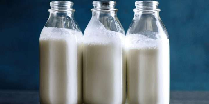 The Debate on Dairy – is it essential?