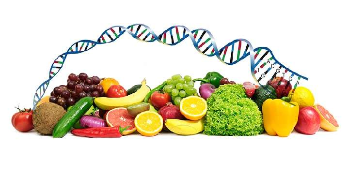 DNA, genetics and nutrition