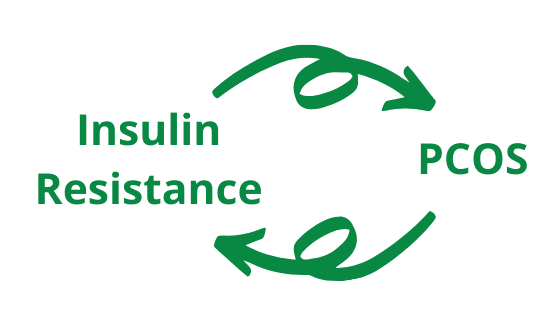 Link between insulin resistance and PCOS