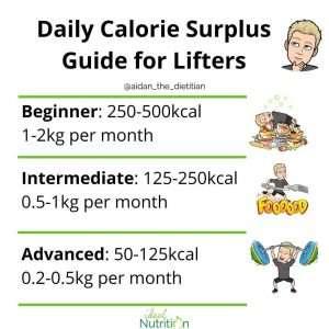 Calorie surplus size